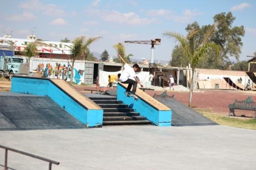Daltonico Skateboards 1