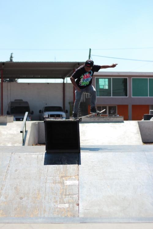 Daltonico Skateboards 2
