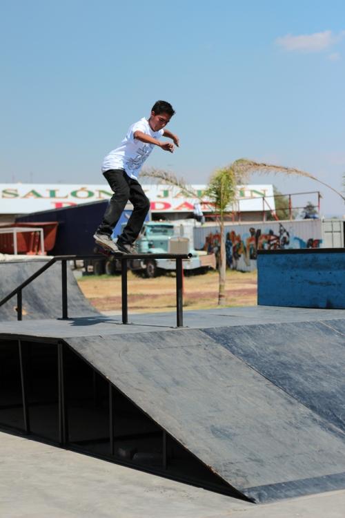 Daltonico Skateboards 4