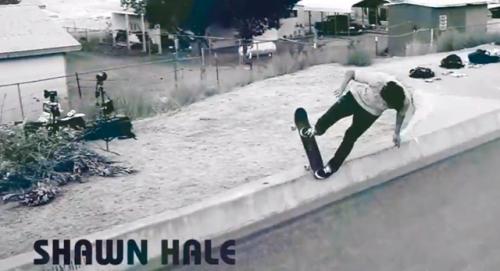 Shawn-Hale