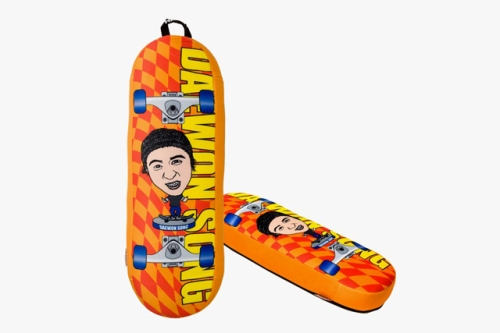 the-skateboard-pillow-daewong-song