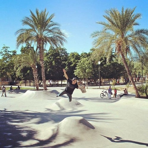 duckie-dude-skate-house-hermanos-fuentes